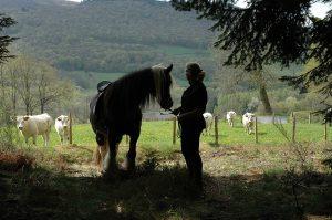 Paardrijden in Frankrijk bij Morvan Rustique