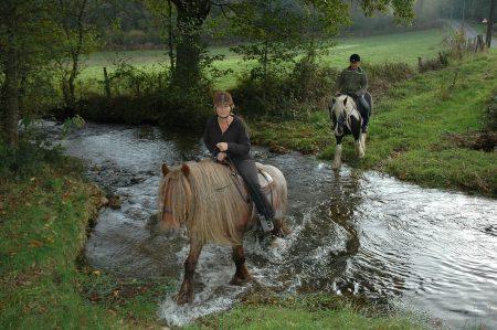 Paardrijden in de Morvan, hier een beekje door op onze lieve tinkers vanaf Morvan Rustique