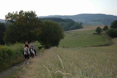 Paardrijden in de Morvan