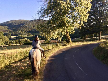 De schoonheid van de Morvan ervaren op de rug van één van onze betrouwbare tinkers. www.paardrijdenfrankrijk.nl