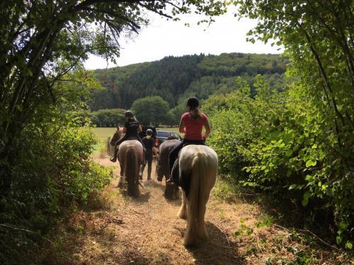 Vakantie in Frankrijk- Morvan Rustique