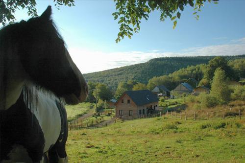 Vakantie in Frankrijk - Morvan Rustique